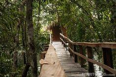 Hotel de Selva no Amazonas