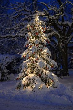 Pin by Robbie Bell on Winter Wonderland  Pinterest  Winter Snow