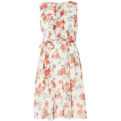 Dorothy Perkins Billie and Blossom Butterfly Dress (59 CAD) ❤ liked on Polyvore featuring dresses, pink, women, pink dress, pink fit and flare dress, floral-print dresses, floral print chiffon dress and butterfly print dress