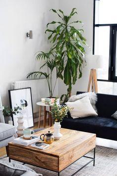 Blue velvet sofa in bohemian living room