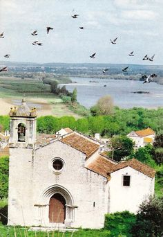 Igreja de Santa Cruz, Santarém, Portugal. Visit Portugal, Lisbon, Mansions, House Styles, City, Finland, Landscapes, Poster, Travel