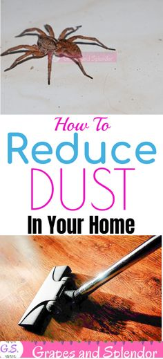 How To Reduce Dust In Your Home - Grapes and Splendor