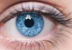 It's True, Eating Carrots Will Help You Maintain Good Eye Health Pretty Eyes, Cool Eyes, Beautiful Eyes, Evolution Of The Eye, Blue Eyes Aesthetic, People With Blue Eyes, Blue Eyed People, Blue Eye Color, Eye Colors