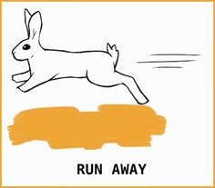Rabbit Body Language: An Illustrated Guide Rabbit Run, Silly Rabbit, Pet Rabbit, Pet Bunny Rabbits, Large Rabbits, Bunnies, Prey Animals, Cute Animals, Rabbit Facts