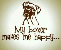 My boxer makes me happy. ..