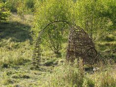 living willow den and arch | Flickr - Photo Sharing!