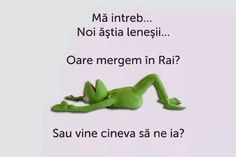 Cand ti-e lene si sa mergi in Rai - Sugubat Stupid Funny, Funny Texts, Funny Jokes, Hilarious, Cool Illusions, Choreography Videos, Sarcastic Quotes, Life Humor, Really Funny