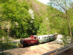 Lillafüred narrow gauge forest railway