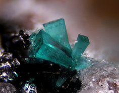 Ktenasite, Zn(Cu,Zn)4(SO4)2(OH)6·6H2O, Couloumier mine, Auzat, Ariège, France. Fov 1,3mm. Copyright © Serge Lavarde