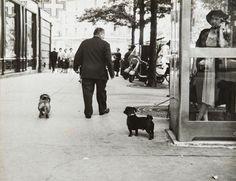 Robert Doisneau - Une vie de chien, Circa 1960, Paris