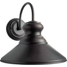 View the Forte Lighting 1227-01 Traditional / Classic Energy Efficient Outdoor 11.25Wx11.25Hx12E Wall Sconce at LightingDirect.com.