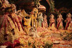 Flowers everywhere.. Shree Krishna, Radhe Krishna, Lord Krishna, Radha Rani, God Pictures, Hare, Mythology, San Diego, Flowers
