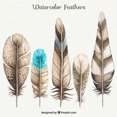 Watercolor Feather Collection Free Vector