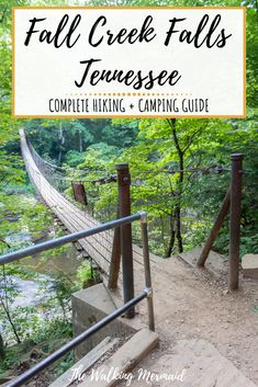 Guide To Fall Creek Falls State Park, Tennessee Oh The Places You'll Go, Places To Travel, Places To Visit, Camping Guide, Go Camping, Tennessee Waterfalls, Nashville Trip, Vacation Spots, Vacation Destinations