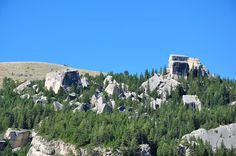 JD's Scenic Southwestern Travel Destination Blog: Bighorn National Forest ~ Rt 14 to Dayton, Wyoming!
