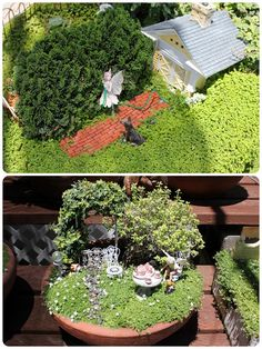 Sunny Sweet Life: Dreaming of a Fairy Garden...