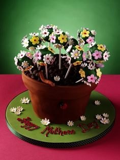 Edible plant pot cake perfect for Mother's Day Flower Pot Cake, Flower Pots, Flowers, Mothering Sunday, Garden Cakes, Edible Plants, Favors, Baking, Desserts