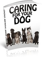 Find out all the tips and tricks to make your dogs life a long, happy and healthy one. - Download for FREE!: http://freebookoftheday.com/1e.php?li=fbotd-dogs&b=caringforyourdog&p=615