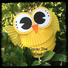 Owl craft made with toilet paper roll and cupcake liners! So cute! Great craft for kids classroom project!