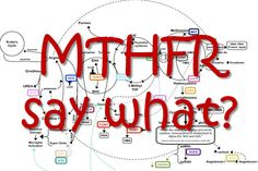 The ND Update: Dr. Lynch talks MTHFR and Methylation