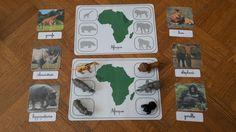 Here is a workshop to work on endemic animals from different continents. This workshop can be done at any age. Science Montessori, Montessori Classroom, Preschool Activities, Continents Activities, Les Continents, After School, Pre School, Fun Facts About Animals, Outdoor Classroom