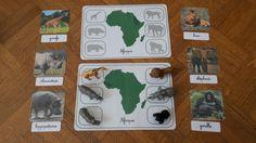 Voici un atelier pour travailler sur les animaux endémiques des différents continents. Cet atelier peut se faire à tout âge.