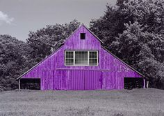 I don't know if I like an old barn being painted purple but, you sure will be able to find it.