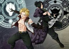 The light and shadow dragons aka the Twin dragons of sabertooth