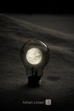 Surreal Artifacts of Life Encased in Magical Light Bulbs - My Modern Metropolis
