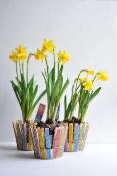 25 Creative DIY ideas with beautiful pots to welcome Spring Craft Stick Crafts, Easy Crafts, Crafts For Kids, Easy Diy, Mothers Day Crafts, Mother Day Gifts, Glitter Clothespins, Cheap Flowers, Spring Crafts