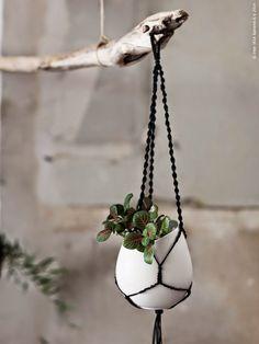 Des+pots+suspendus+à+une+branche2.jpeg (768×1024)