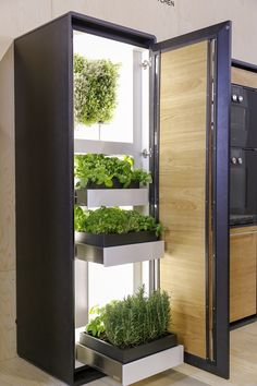 How to store in your kitchen: Organic Food, Spices and Herbs.