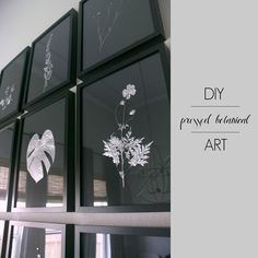 DIY Pressed Botanical Art • Free tutorial with pictures on how to make a piece of pressed flower art in under 60 minutes