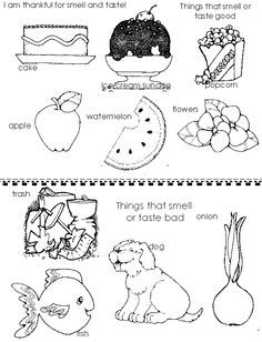 lesson 20 i am thankful that i can smell and taste - I Can Be A Friend Coloring Page