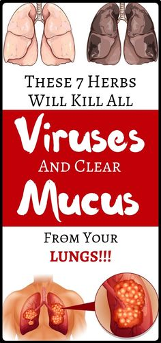 Natural Remedies These seven Herbs will Kill Viruses and Clear Mucus from Your Lungs forever. You should consume them daily Health Remedies, Home Remedies, Natural Remedies, Flu Remedies, Herbal Remedies, Healthy Women, Healthy Tips, Healthy Recipes, Healthy Food