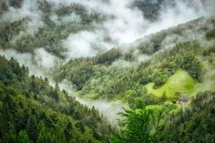 Ease your wanderlust with our European hiking trail bucket list. We share the best destinations for the ultimate European outdoors adventure vacation. Bamboo Forest Japan, Dark Hedges, Amazing Destinations, Travel Destinations, Bad Herrenalb, Crooked Forest, Illusion Photos, Black Forest Germany, Hallstatt