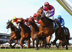 Eclair Choice Photos - Derby Day - Zimbio