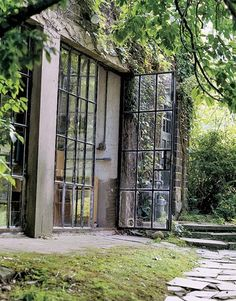 This is a perfect match - industrial windows and wild nature ., This is a perfect match - industrial windows and wild nature .