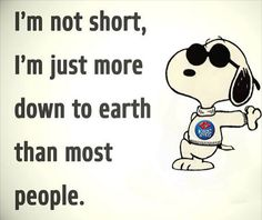 Funny Sayings About Family Hilarious 23 Ideas – Jokes Peanuts Quotes, Snoopy Quotes, Snoopy Love, Snoopy And Woodstock, Phrase Cute, Charlie Brown Quotes, Short People Problems, Short People Quotes, Short Girl Quotes