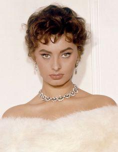 """lesbianfranksinatra: """" Sophia Loren c. 1956 """""""