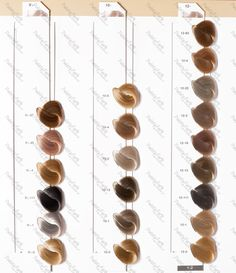 Igora royal color chart -1: Cendre (silver ash) -2: Ash ...