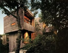 From rough-cut cyprus walls to bleached-oak floors and exposed structural fir, this so-called tree house by Bates Masi Architects certainly does surround residents with woods of all kinds in every possible way, from each vertical and horizontal wall and surface within the home to the exterior cladding and surrounding forest.