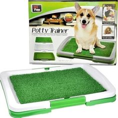 High Quality New Puppy Potty Trainer Indoor Grass Training Potti Patch Restroom Tray Pet Toilets Three Layers >>> You can find out more details at the link of the image.