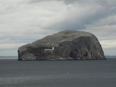 Bass Rock, home to over 250,000 seabirds
