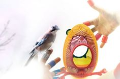 3D-printed nests designed by @printednest bring birds back into cities. They adhere to smooth exterior surfaces of urban structures.