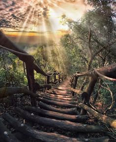 @naturetravelwildlife on Instagram:  Source: @amazing.destination
