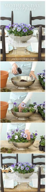 Mothers Day Planted Pansie Centerpiece & Gift Idea