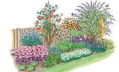 Von August bis weit in den Herbst werden die Blütenschirme Hoher Fetthennen, zum Beispiel der rosarot blühenden, dunkellaubigen 'Karfunkelstein' (1) (Sedum telephium), zur Landebahn für Biene, Hummel und Falter. Sonnenbraut 'Biedermeier' (2) (Helenium x cultorum), Purpur-Sonnenhut (3) (Echinacea purpurea) und Duftnessel 'Black Adder' (4) (Agastache rugosa) glänzen ebenso mit einem lange anhaltenden Nahrungsangebot wie der bei Insekten so beliebte Sommerflieder, hier 'Empire Blue' (Buddleja…