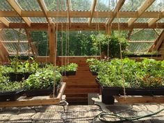 Container Gardening - An Answer To Minimal House For Increasing Vegetation How To Build An Earth-Sheltered Greenhouse - Mother Earth News What Is Greenhouse, Greenhouse Farming, Underground Greenhouse, Greenhouse Plans, Greenhouse Shelves, Heated Greenhouse, Winter Greenhouse, Permaculture, Plan Potager
