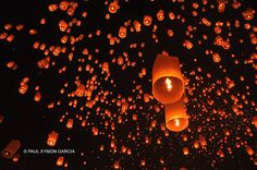 Thousands of lanterns float in the dark night sky at the Yi Peng Lantern Festival
